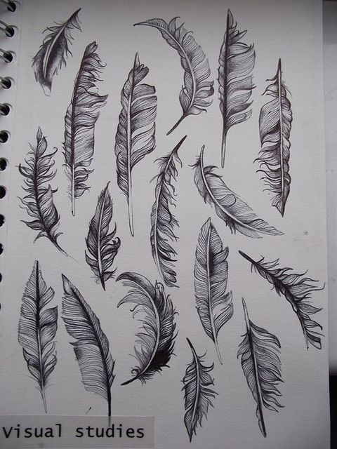 feathers draw - Click image to find more tattoos Pinterest pins use for embroidery ideas