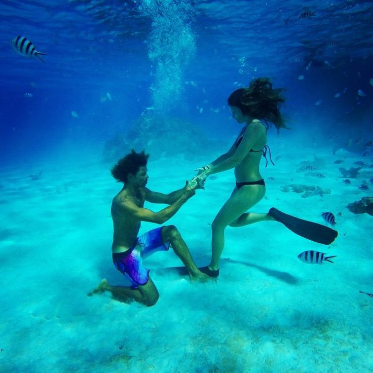 We seriously can't handle this underwater marriage proposal, and the video is amazing!