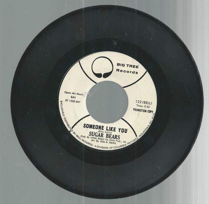 Sugar Bears Promo You Are The One Someone Like You 45 RPM Big Tree Records…