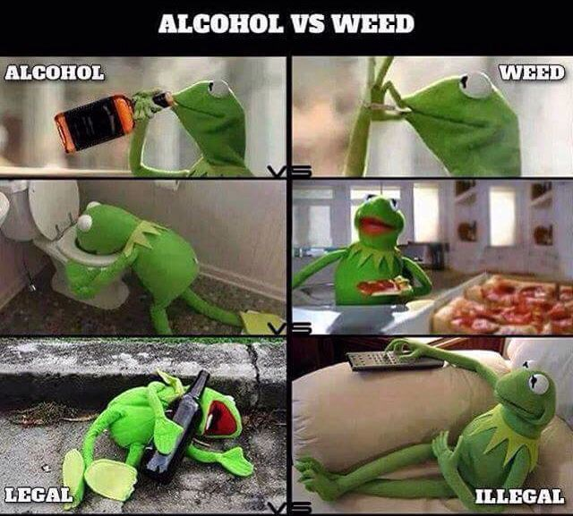 Alcohol vs weed                                                                                                                                                                                 More
