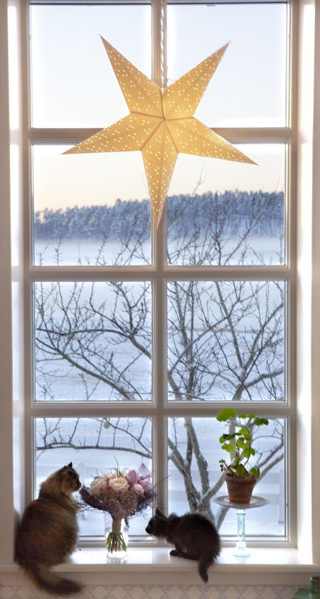 Advent star - Norwegian Interior Style Blog A Christmas star in every home in…