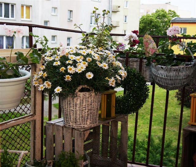 my shabby my dream      : Balkon cz.1