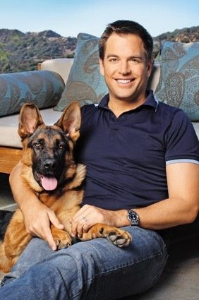 Michael Weatherly from NCIS..Dog looks a little...familiar !!!! (: