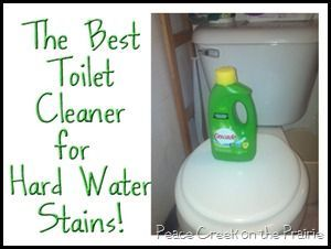 Toilet cleaner i accidently discovered toilets water - Bathroom cleaner for hard water stains ...