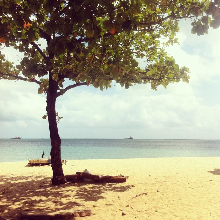 Cumbuco #brasil #norteste #ceara #beach #cayu