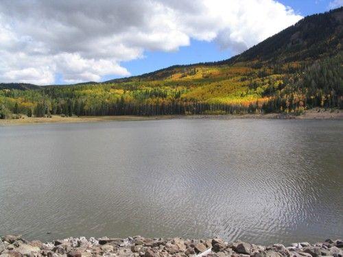 1000 images about fishlake national forest on pinterest for Fish lake utah