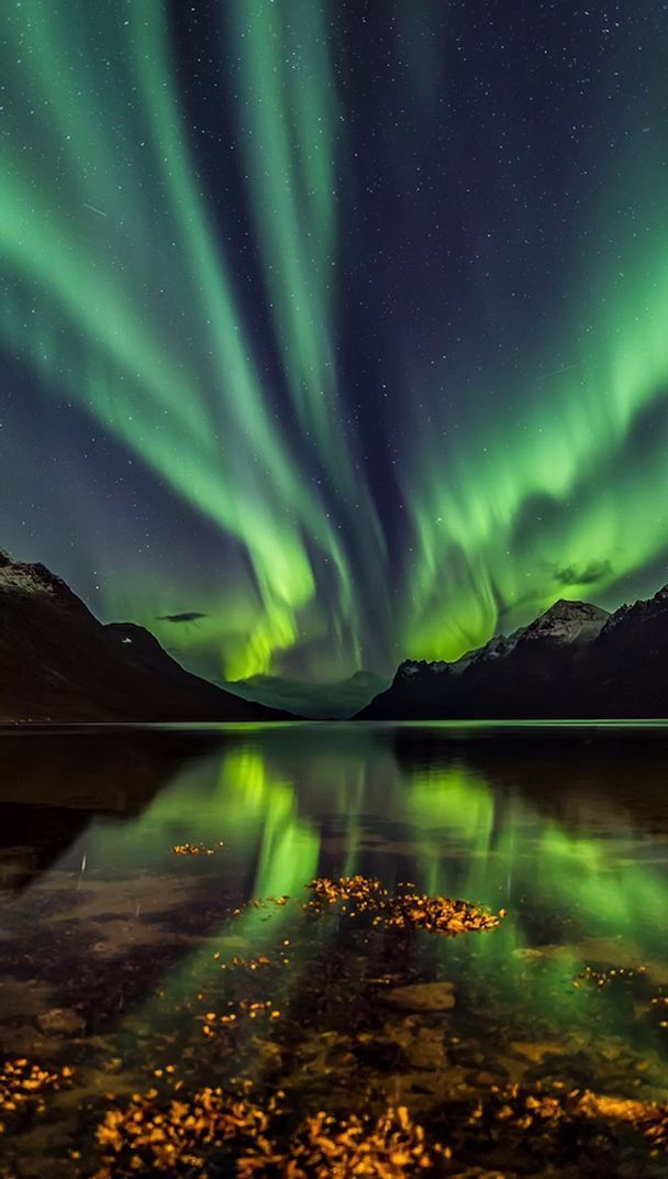 Aurora Borealis A Sight Which Should Be On My Bucket List Aurora Borealis Bucket List Sight In 2020 Northern Lights Painting Light Painting Galaxy Wallpaper