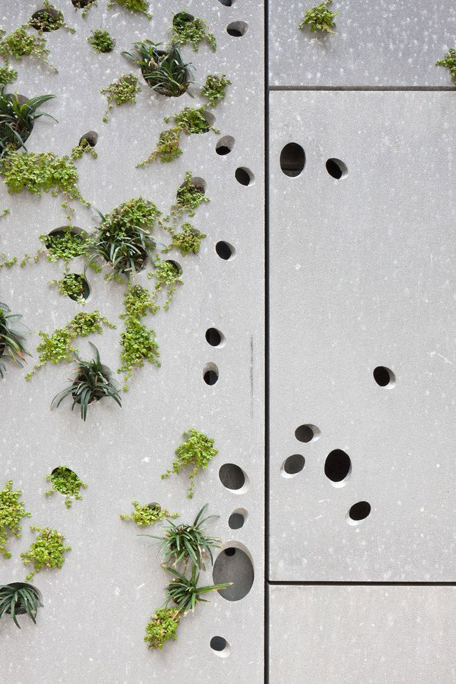 ♂ Green architecture. vertical garden