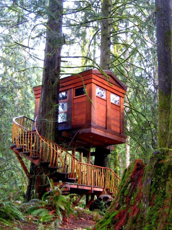 Treehouse Point (Issaquah, Washington) B&B Reviews