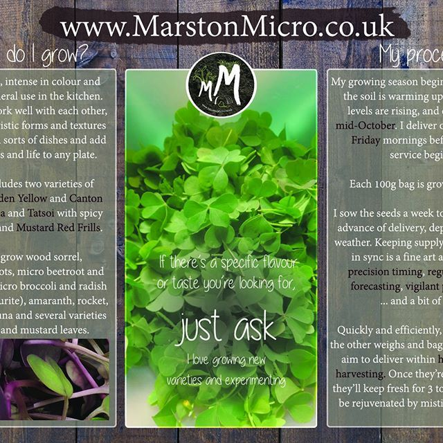 Postcard design for a small independent #microsprout #microfarm in #Somerset. Marston Micro specialises in organic produce with a bespoke ethic. #torielliottillustration #toridraws www.torielliott.co.uk #illustration #marstonmagma #marstonmicro #microsalad #microveg #organic #organicproduce #organicfarming #organicsomerset #thegoodlife #logo #graphicdesign #branding #postcard