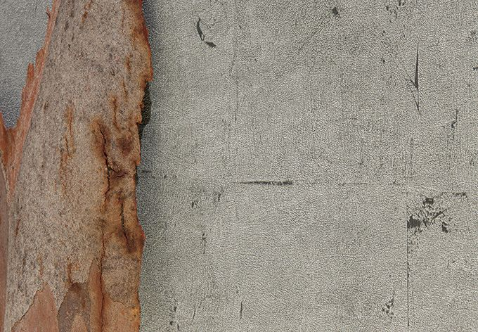 Vlies Tapeten Daniel Hechter : ?ber 1.000 Ideen zu ?Steinoptik Wand auf Pinterest Steinwand Im