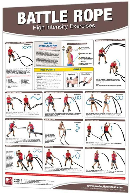 24 x 36 Laminated Fitness Poster / Wall Chart - Battle ...