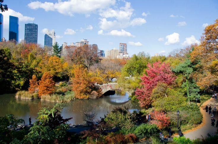 Otoño en el Central Park, NY