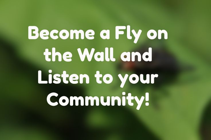 Become a Fly on the Wall and Listen to your Community!