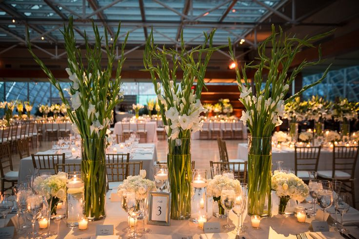 Modern White Gladiolus Centerpieces                                                                                                                                                                                 More
