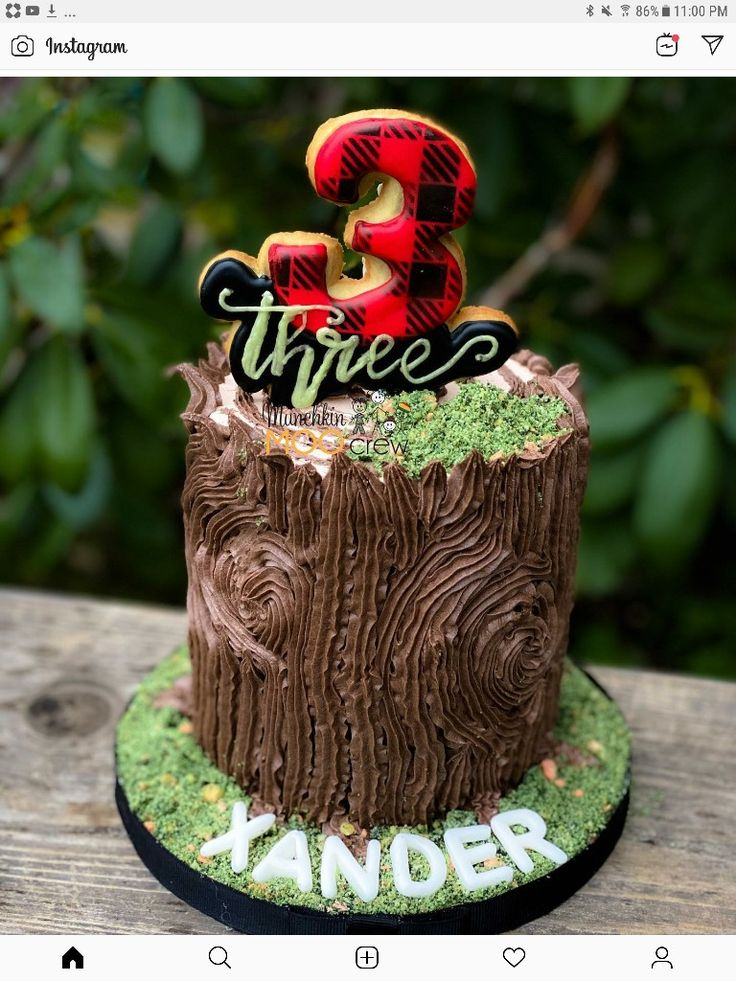 Tinker Bell Cake | Cookie decorating, Cake decorating