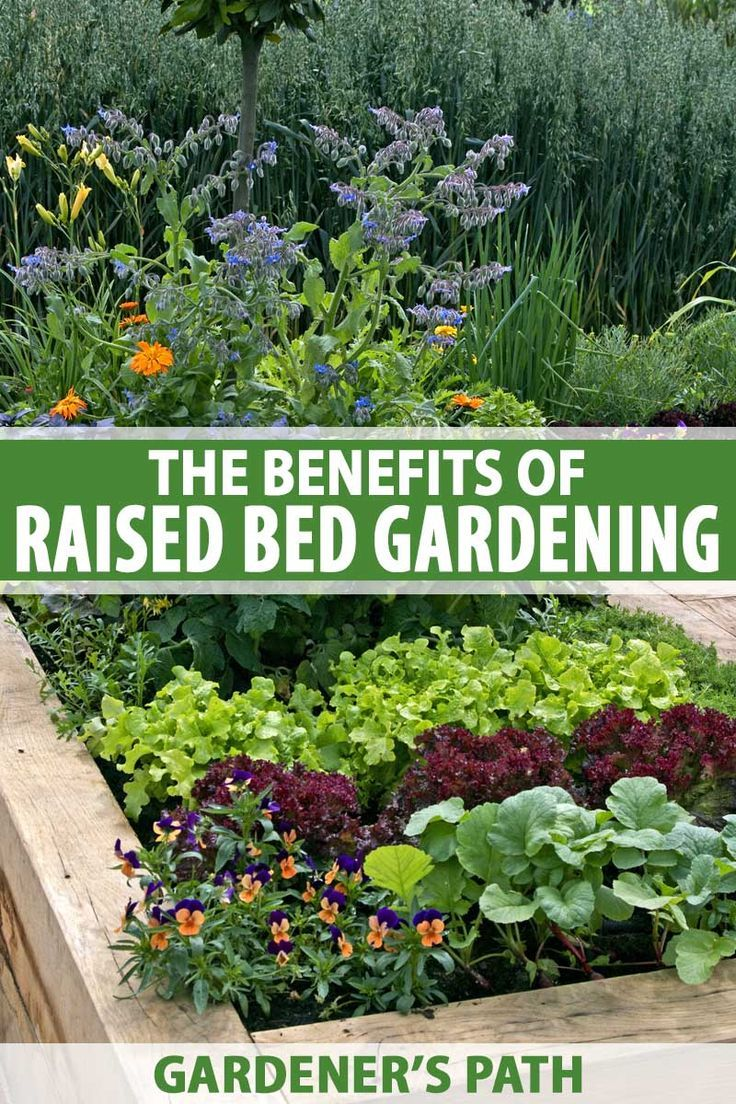 9ac7086148fcb68895cf76099a5b5c6d - Why Do Gardeners Use Raised Beds