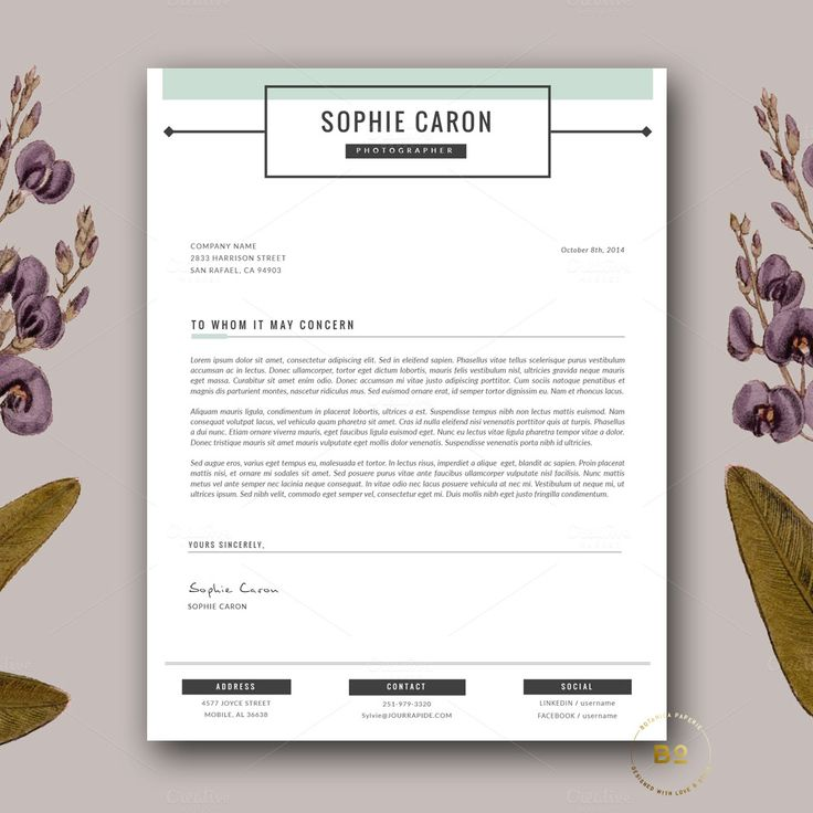 15 best resumes 2016 images on Pinterest Design resume, Resume - professional resume fonts