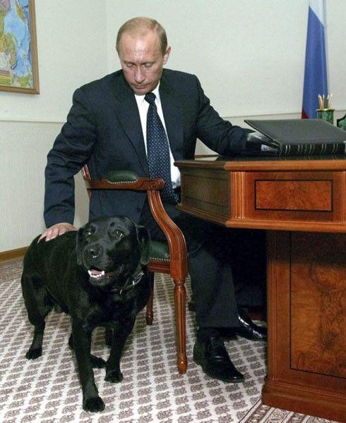 Владимир Владимирович Путин и звери