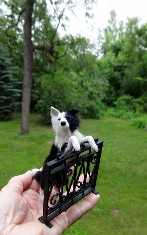 1/12 Border Collie Designer Dog Miniature www.lucyfrancisma...