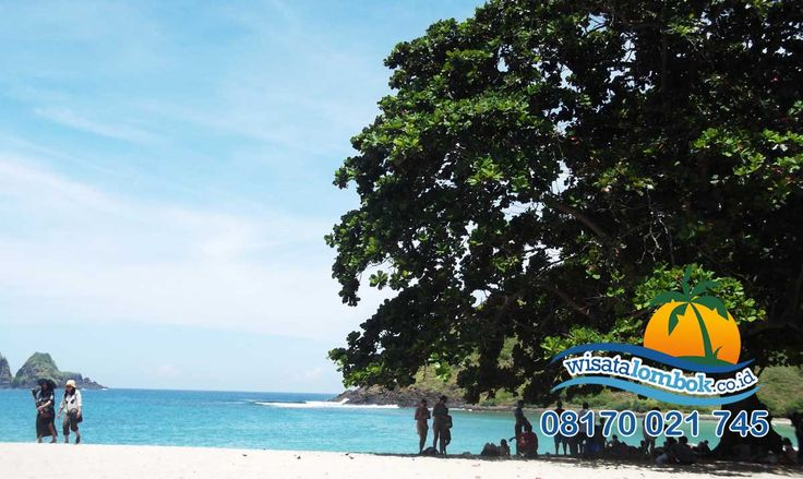 Ini Dia The Best Wisata Lombok Tahun Ini  Pantai Mawun adalah pantai terindah di Lombok, yang memiliki panorama dan pemandangan yang harmonis, cocok untuk anda bersama pasangan ataupun keluarga untuk berlibur di sini. Yuk Kunjungi !!! Buktikan Sendiri Di  http://www.wisatalombok.co.id/info-wisata-lombok/keindahan-di-pantai-mawun-lombok/