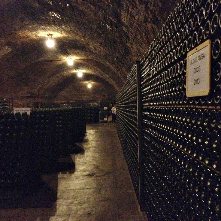 Contratto Cellar in Canelli, Piemonte