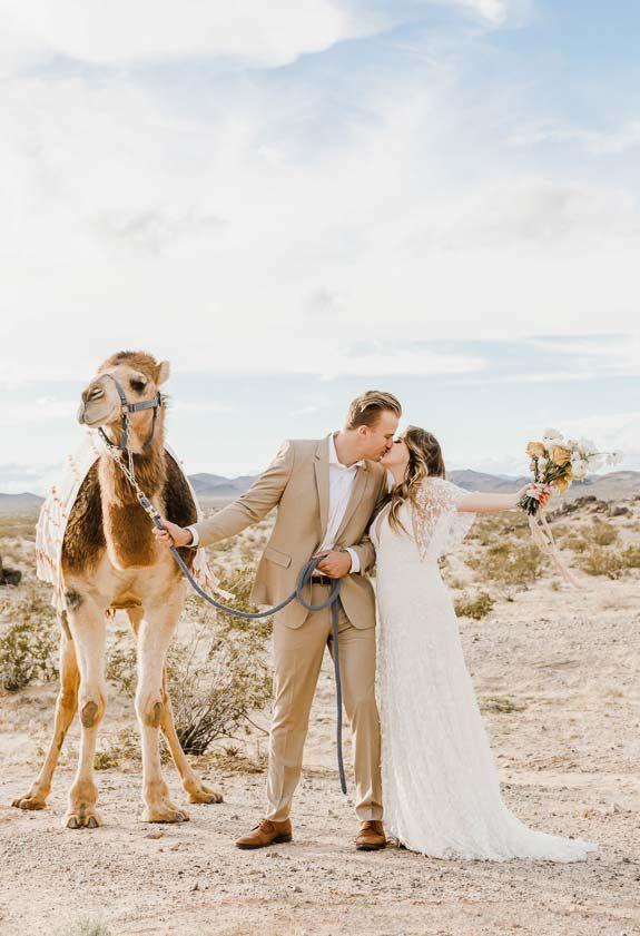 33 Dekorative Ideen Fur Pampasgras Zur Hochzeit Hochzeitsfotos Hochzeit Pampasgras