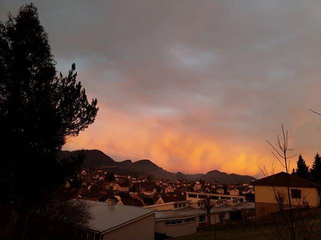 Obwohl der Westhimmel ist das kein Abendrot sondern die Spiegelung des Morgenrots im Osten.  #Naturmomente #Schwarzbubenland #Solothurn #Nunningen #Schweiz  #photooftheday #magicplaces #kraftorte #switzerland #switzerlandpictures #magicswitzerland  #nature #naturelovers #forest #winter #sky#clouds #cloudporn #cloudstagram #instaclouds