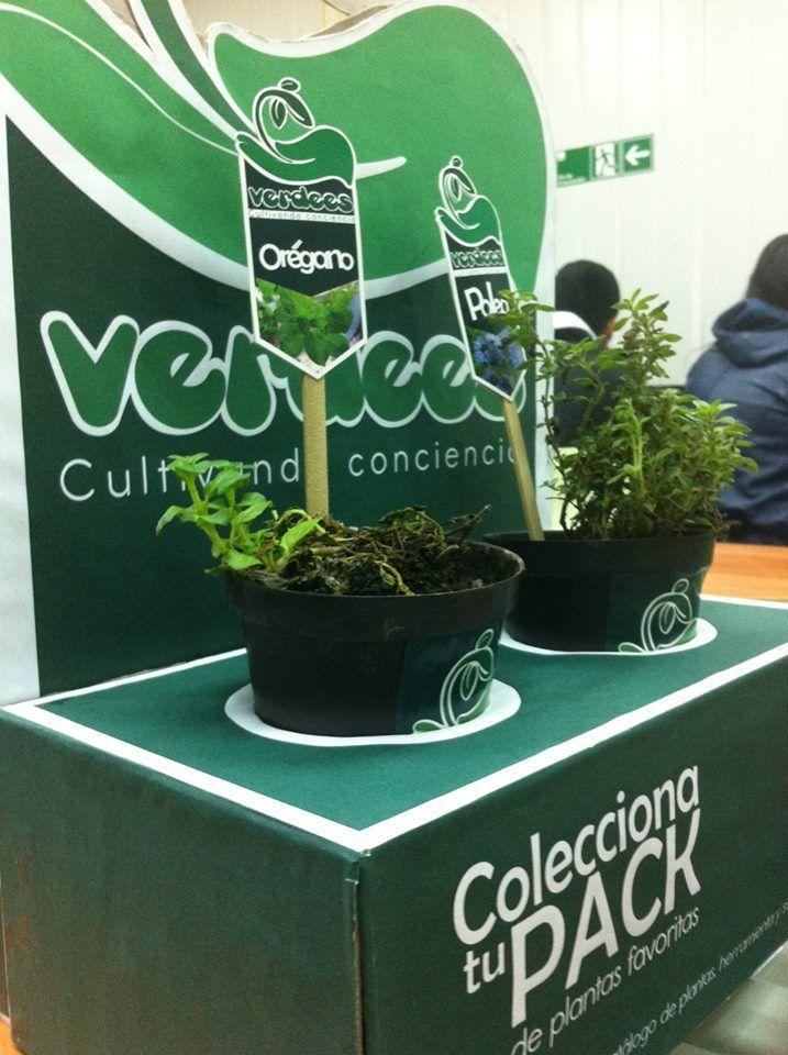 "Fotografias ""Verdees"" packaging"