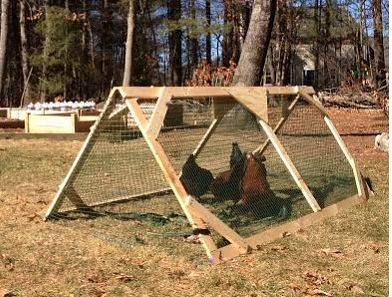 Control chickens with this item!  http://www.homesteadingfreedom.com/how-to-build-a-chicken-tractor/