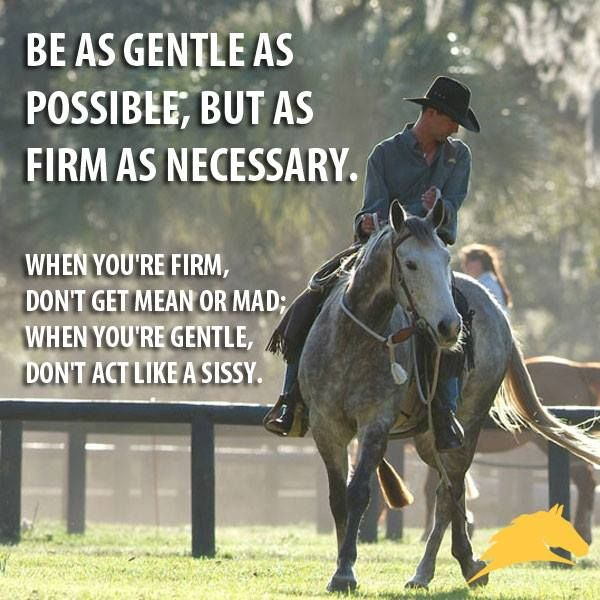 """""""Be as gentle as possible, but as firm as necessary. When you're firm, don't get mean or mad; when you're gentle, don't act like a sissy."""" - #PatParelli"""