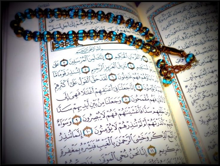 The Amazing Qur An Quran Divine Revelation Prophet