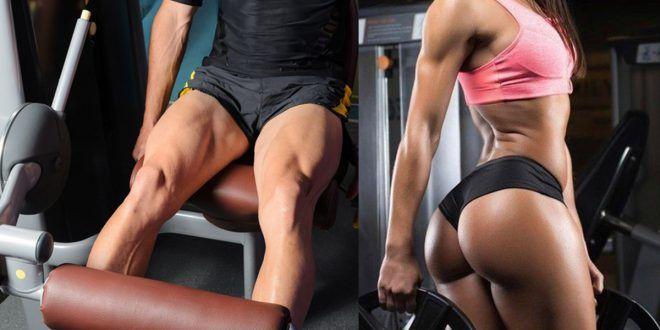 Como engrossar as pernas? Veja as dicas de dieta mais 8 exercícios