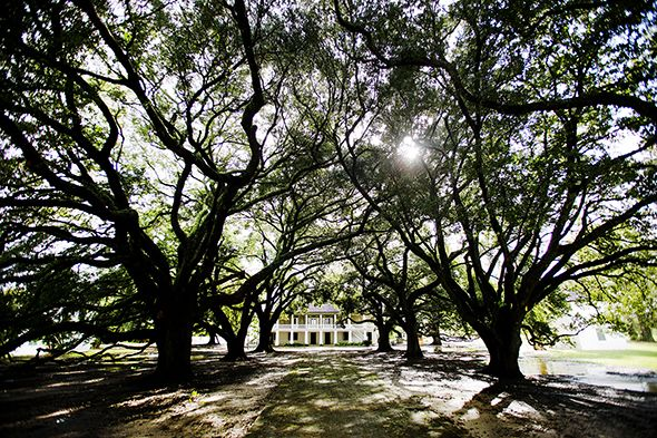 The Plantation Every American Should Visit