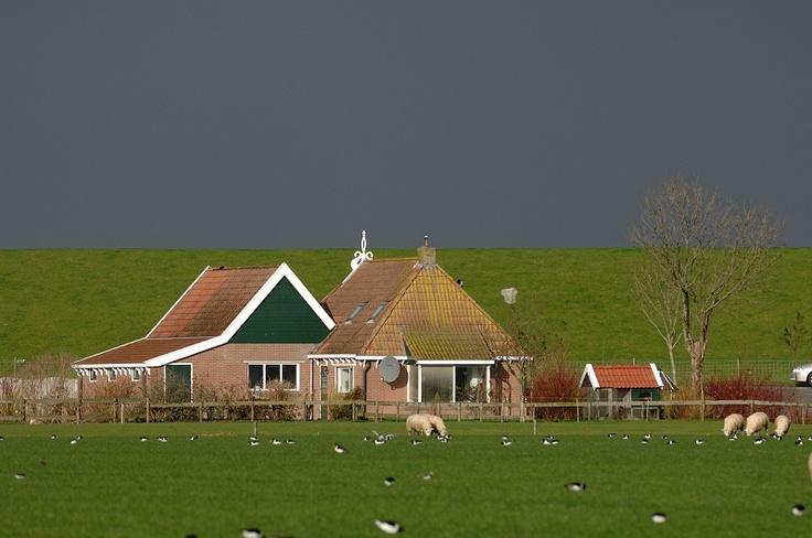 Google Afbeeldingen resultaat voor http://www.fryslansite.com/d-base/foto/Dijkhuis_Hallum.jpg