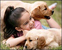 Adiestramiento canino: perros y niños, juego y entrenamiento | Cuidar de tu perro es facilisimo.com