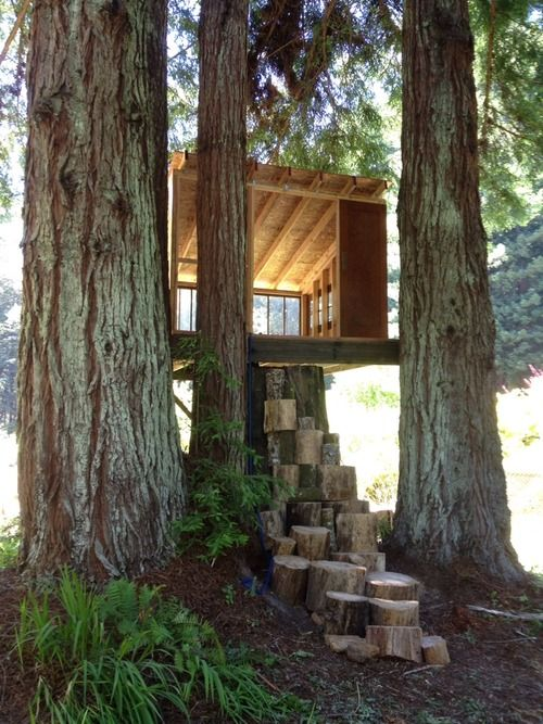 487 Best Tree Houses And Forts Images On Pinterest