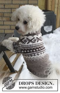 """Knitted DROPS dog's jumper with Norwegian pattern in """"Karisma"""". Size XS - L. ~ DROPS Design"""