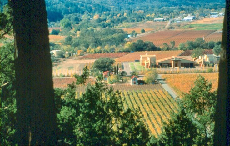 View from Sterling Winery