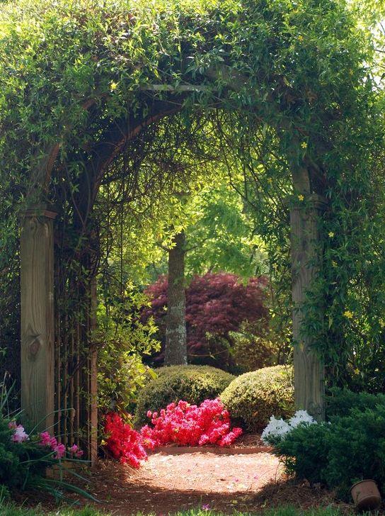 1000 ideas about garden archway on pinterest garden for Axelle red jardin secret