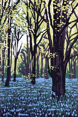 Woodland Gallery - Alexandra Buckle