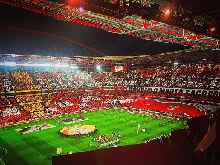 Estádio da Luz - SL Benfica