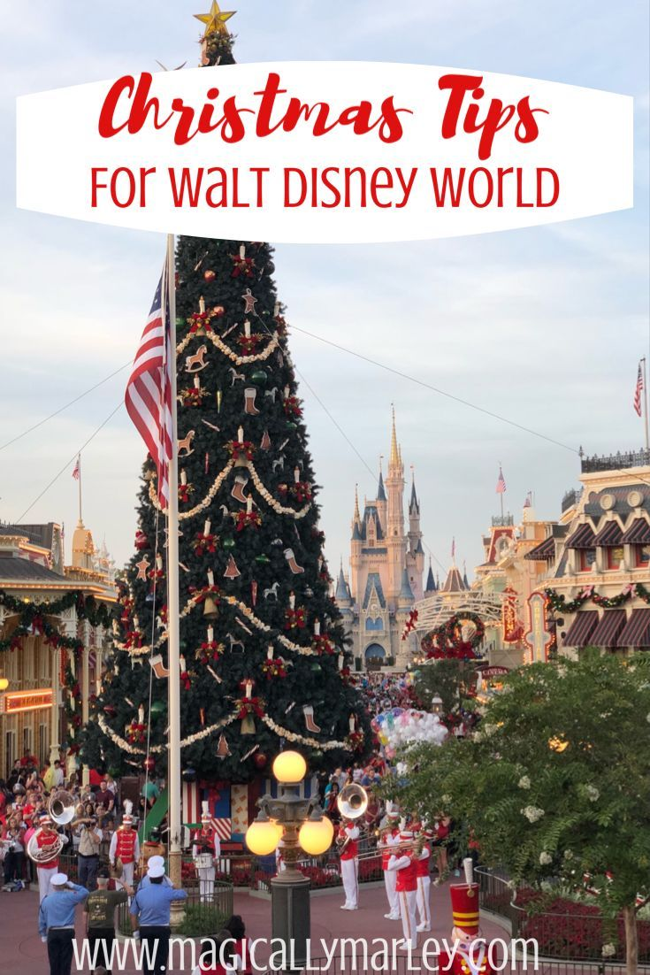 Magically Marley S Guide To Christmas At Disney World In 2020 Disney World Christmas Disney World Christmas Holiday Travel
