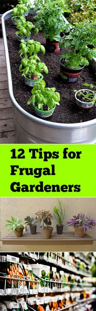 Cheap Gardening Ideas 19 handmade cheap garden decor ideas to upgrade garden 12 Tips For Frugal Gardeners Herbs Gardengarden Tipscheap Garden Ideasdiy