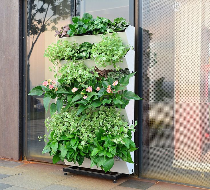 Amazon.com: BloomWall Vertical Wall Garden Planter by SavvyGrow - Plant Rack Self Watering System includes 4 Pots and Hanging Bracket - Perfect Herb Growing Kit for Indoor & Outdoor Planting and Decor (1, Lime): Patio, Lawn & Garden
