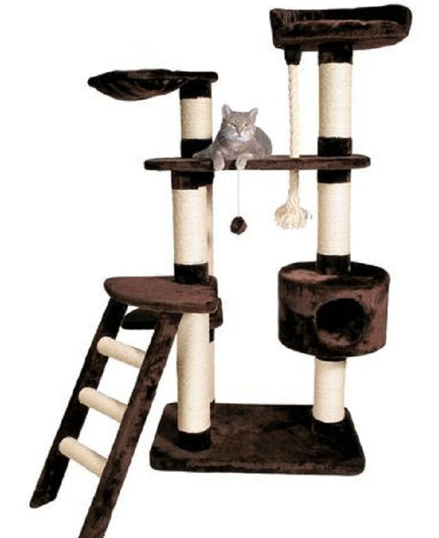 игровой кошачий домик