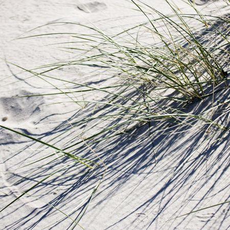 #beach #summer #hornbaek #sand