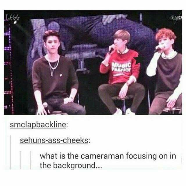 The cameraman? What? Wae? Why on earth would you? Poor Sehun. Why would you do that to your idol? That's embarrassing. Jerkfaces.