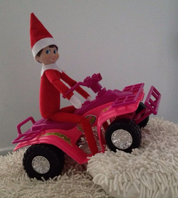 Day 9 - 'Rudy' is quad-biking today! He must think my couch cushions are like snow at the North Pole!