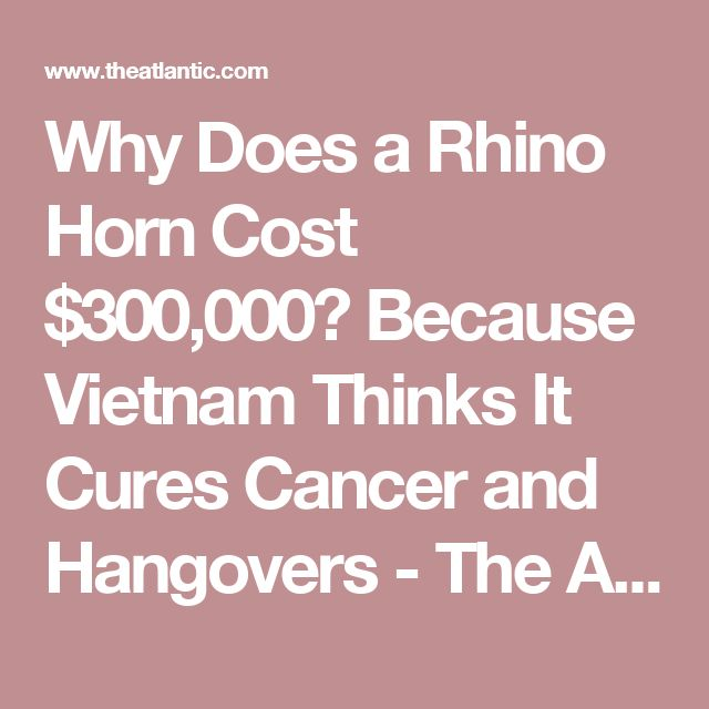 Why Does a Rhino Horn Cost $300,000? Because Vietnam Thinks It Cures Cancer and Hangovers - The Atlantic